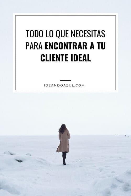 cliente ideal caracteristicas